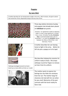 Differentiated version of Poppies