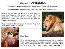 Classification: 5 Kingdoms of Life (and viruses) Poster Activity - IGCSE Biology