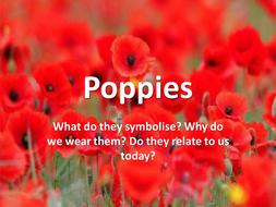 1.-Poppies.pptx