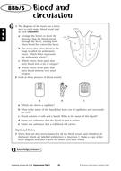 8Bb5---Homework.pdf