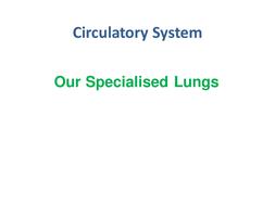 Lungs.pptx