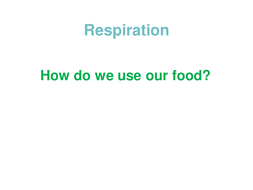 How-do-we-use-our-food.ppt
