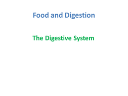 Food-and-Digestion.pptx