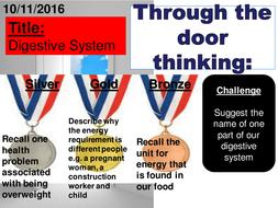 1.4-Digestive-system-V2.pptx
