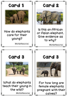 Activity-and-Task-Cards-Elephants.pdf