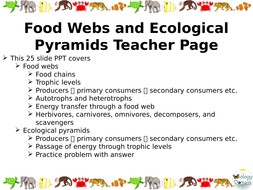 food-webs-and-ecol-pyramids-slide-show.pptx