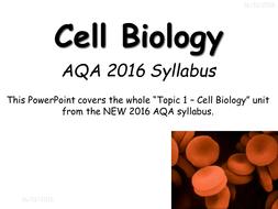 cells.pptx