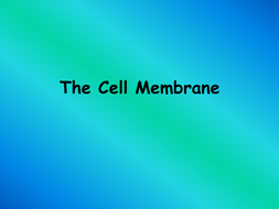 The-Cell-Membrane.ppt