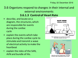 3.6.1.3-Control-of-Heart-Rate.ppt