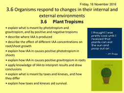 3.6-Plant-Tropisms.ppt