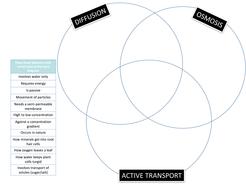 Wiring Diagram Database: Osmosis And Diffusion Venn Diagram