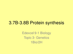 3.7B-3.8B-Protein-synthesis.pptx