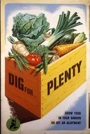 Dig-for-Plenty.jpg
