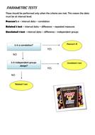 07---Parametric-Tests-Flow-Chart.docx