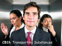 CB1h-Transporting-Substances.pptx