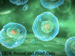 CB1b-Animal-and-Plant-Cells.pptx