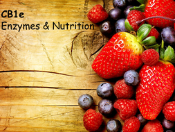 CB1e-Enzymes-and-Nutrition.pptx