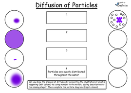 Diffusion - Differentiated Worksheets