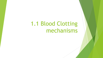AS Level Biology: Blood clotting process