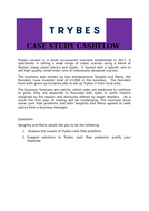 Case--Study-Cash-flow.docx