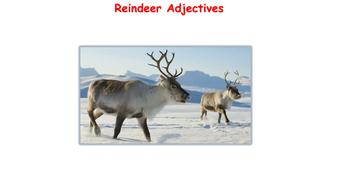 Reindeer-Adjectives.pdf