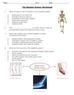 The-Skeletal-System-Worksheet-1-.pdf