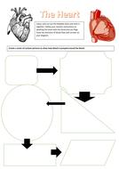 heart-worksheet-KS3.docx