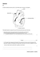 AS-PEQ-SAVR-Circulation.doc