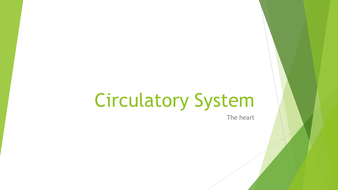AS Level Biology: The Cardiac Cycle