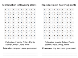 Reproduction in flowering plants starter and plenary ks3