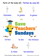 Parts of the Body in French Worksheets, Games, Activities and Flash Cards  (with audio) 2