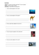 Animal Adaptation Year 2 Lesson