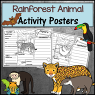 Rainforest Animal Research Activity Posters