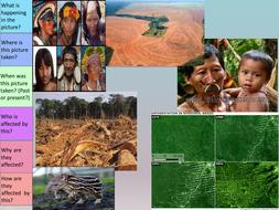 Raingorest-deforestation.pptx