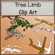 Tree Limbs Clip Art - B&W & Color
