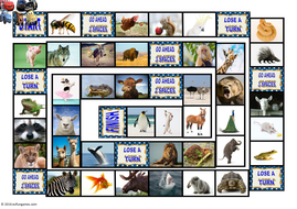 Animals-Animated-Board-Game-Cars-AV.pps