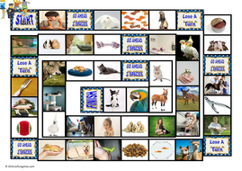 Pets-and-Pet-Care-Animated-Board-Game-Simpsons-AV.pps