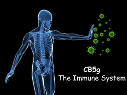 CB5g-The-Immune-System.pptx