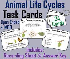 Animal Life Cycle Task Cards