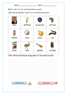 set-2-worksheet-2-easy-choose-a-or-an-with-images.pdf