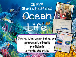 A-Complete-Unit-of-Ocean-Life-and-Interdependence.pdf
