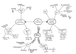 Mind map for B4h: Farming OCR Gateway (Legacy) by harriet8
