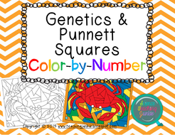Genetics-and-Punnett-Squares-Color-by-Number_ScienceTeachingJunkie_SECURED.pdf