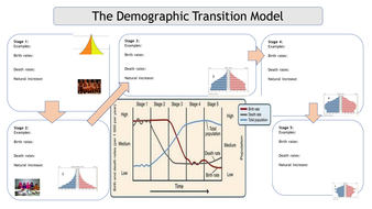 Demographic-Transition--A3-Sheet..pptx