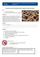 Maggot-choice-chamber-practical.docx