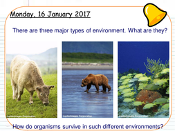 Outcome-3---4---Adaptations-in-plants-and-animals.pptx