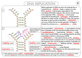 a level biology worksheet pack on dna and protein synthesis by beckystoke teaching resources tes. Black Bedroom Furniture Sets. Home Design Ideas
