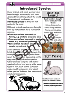 End-Animals-Res-5.jpg