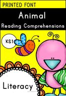 Animal Reading Comprehensions for KS1