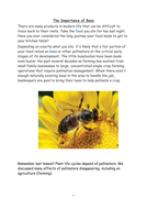 The-importance-of-bees-factsheet 2(HA).docx